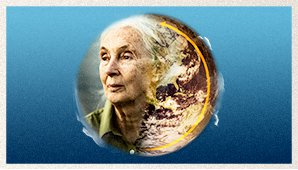 Dr Jane Goodall – Rewind The Future